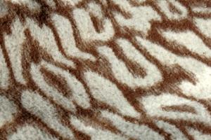 blanket-pattern-1237693-m