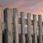 Nowoczesne ogrodzenia z siatki