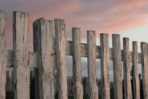1396662_vintage_fence__2
