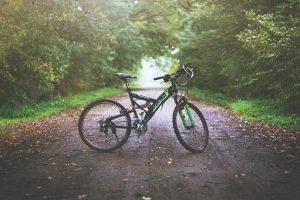 rower-na-lesniej-drodze